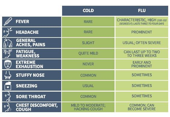Symptoms of Flu vs. the Cold