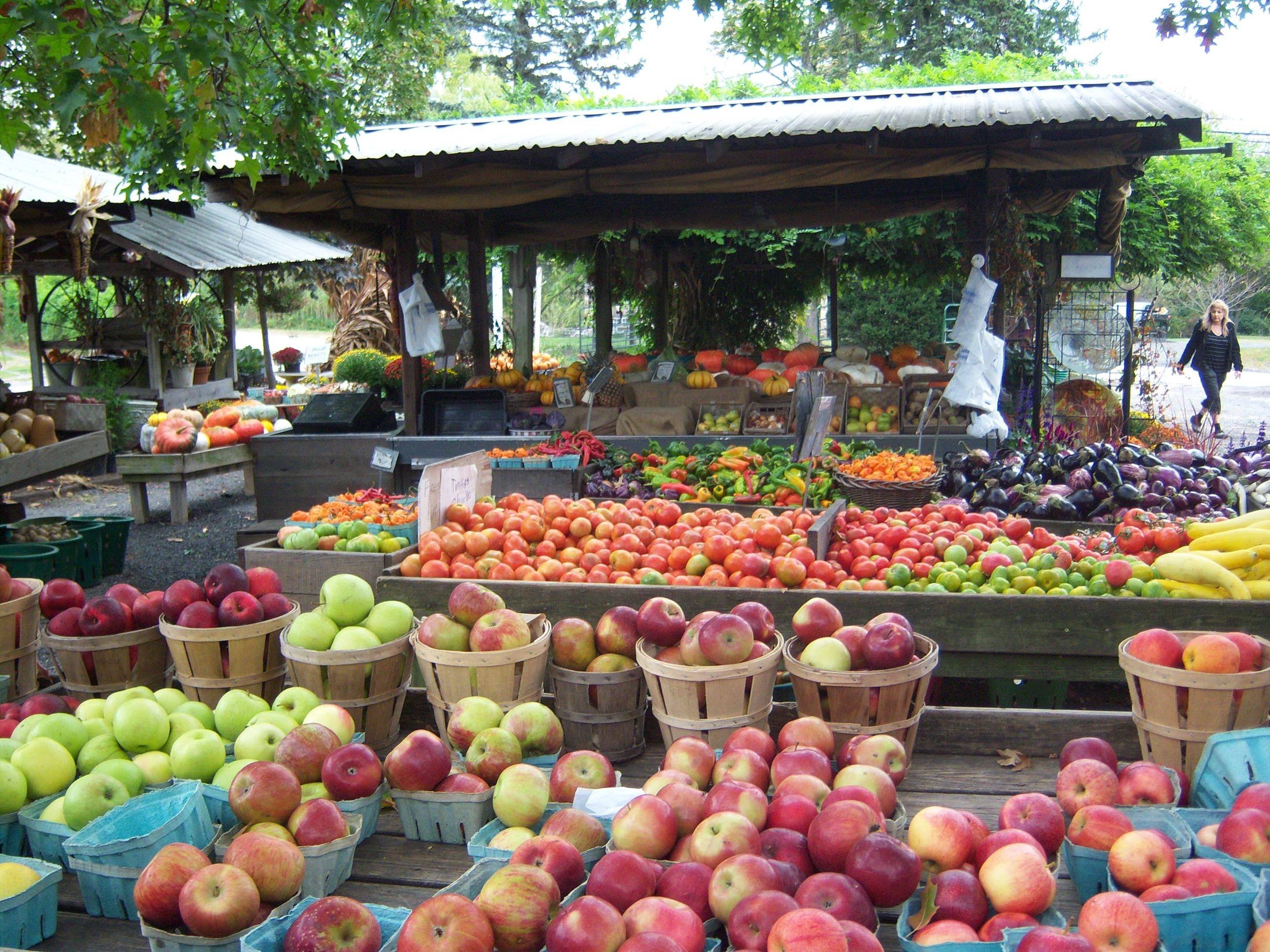 Produce at Maple Acres Farm in Plymouth Township