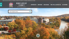 New County Website Homepage
